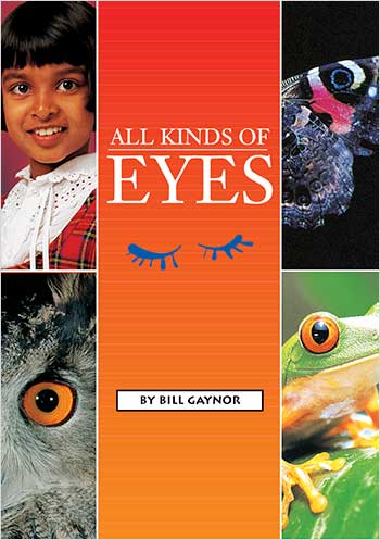 All Kinds of Eyes