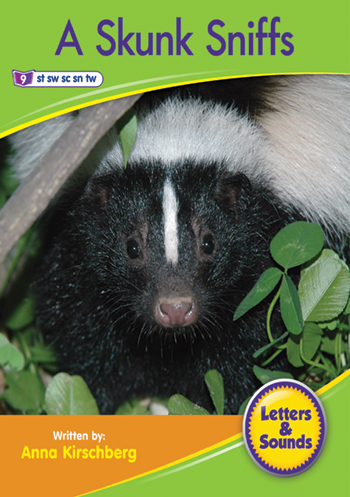A Skunk Sniffs